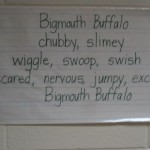 Fish Poetry at Nappanee Elem