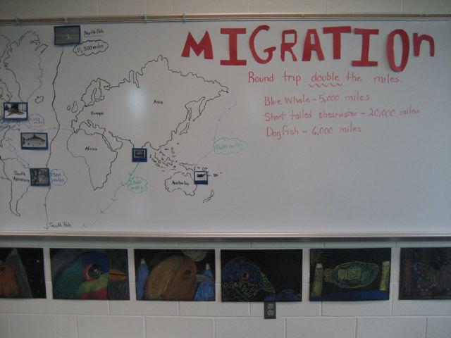 It's My City migration map
