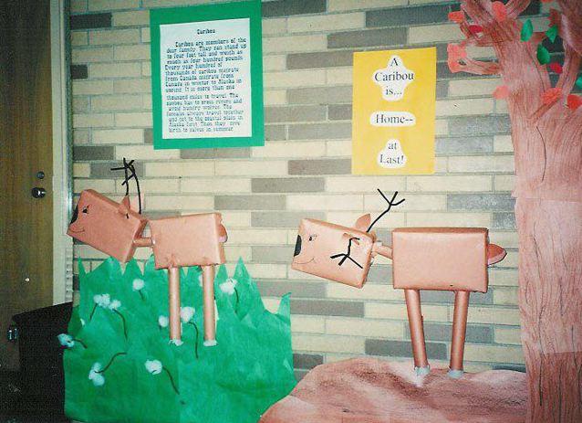 school-display-caribou