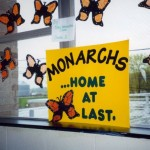 school-display-monarch