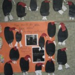 Moving to a comparison of turkey vultures