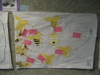 bumblebee life cycle chart Hamilton,
