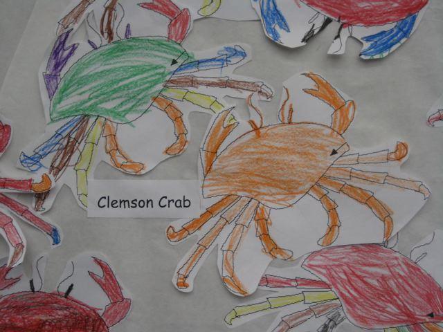 Clemson Crab
