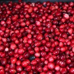 cranberry1