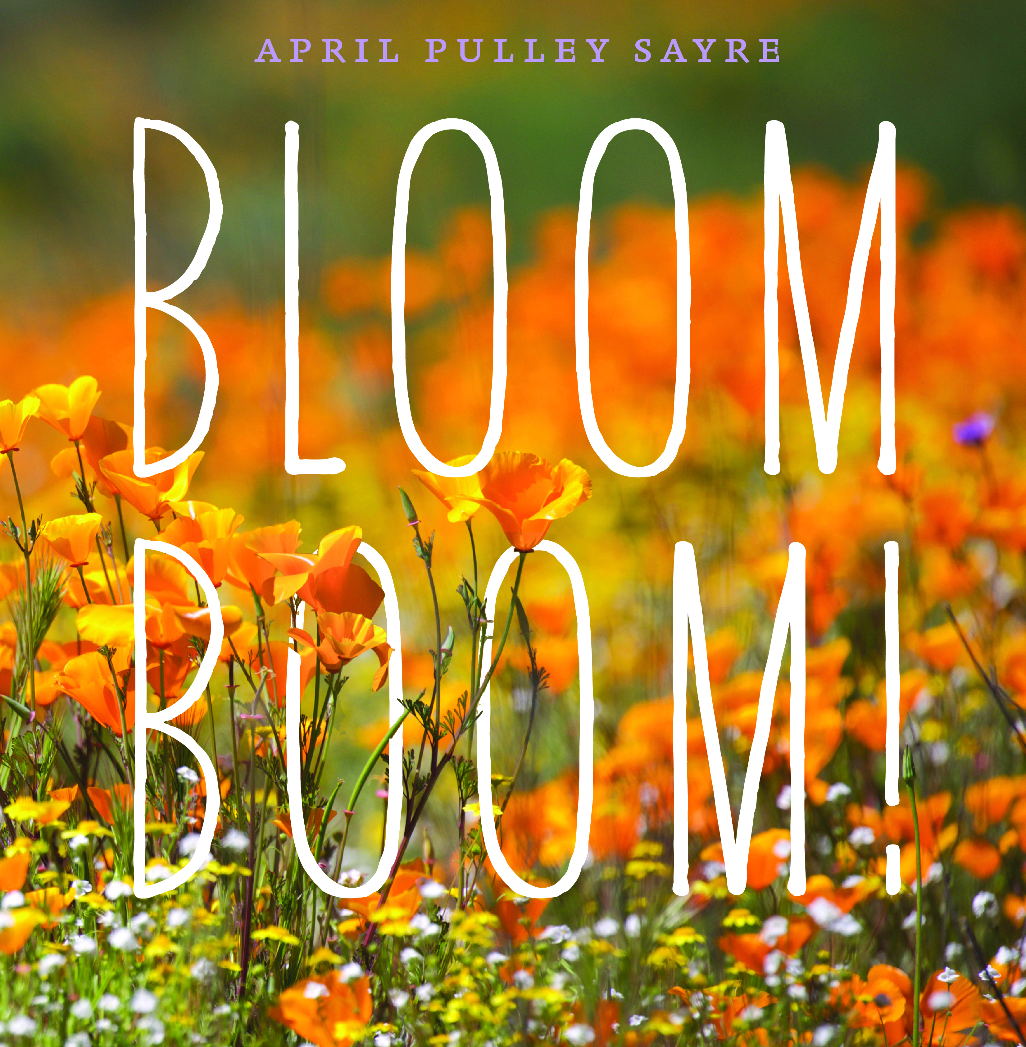 Bloom Boom Cover April Pulley Sayre