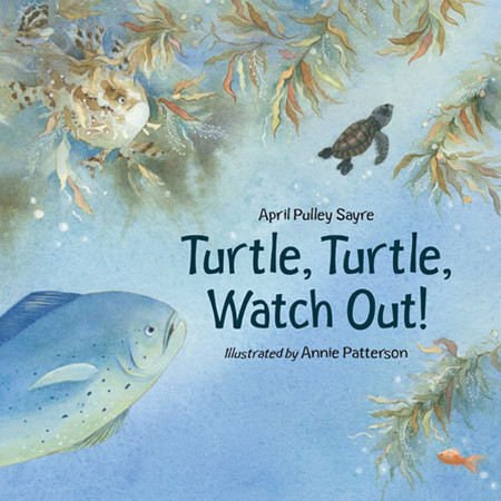 April Sayre's Book Turtle, Turtle, Watch Out!
